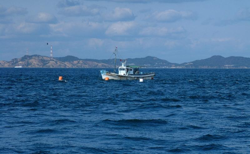 袋待ち網漁業